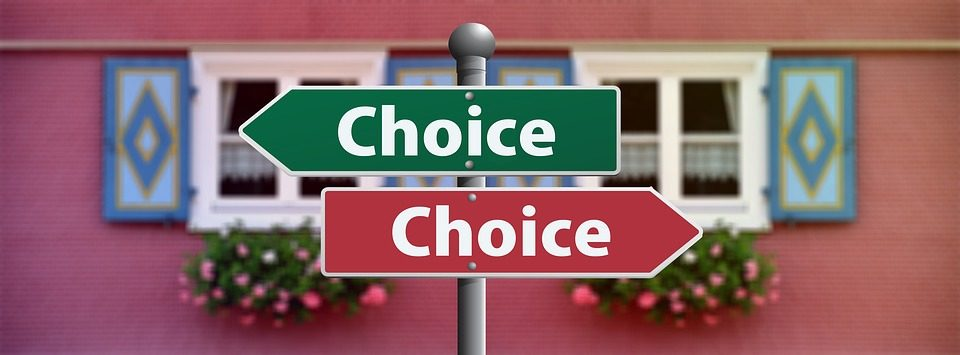 Students have to make choices of who they believe could serve the nation the best. (www.pixabay.com)