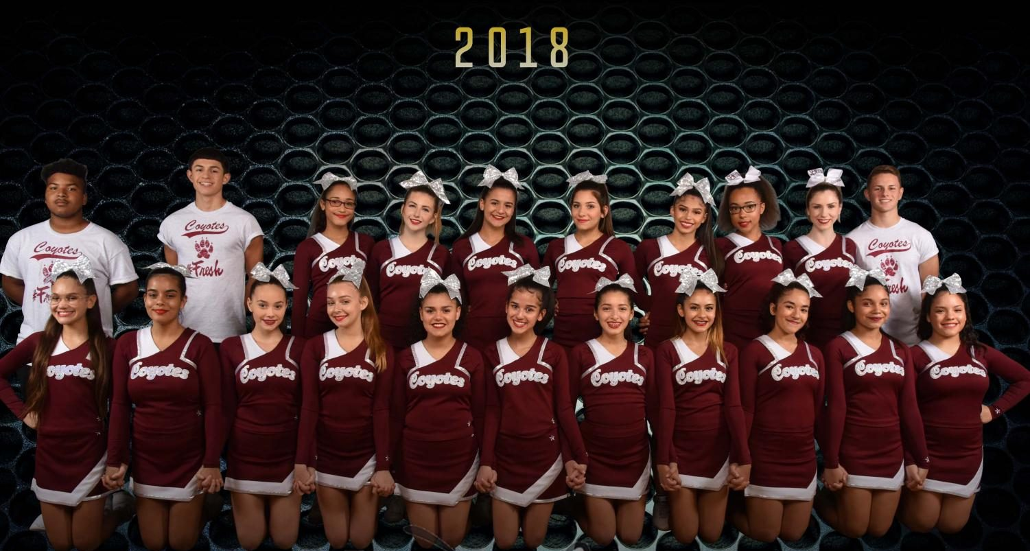 The cheer team poses for a picture moments before hitting the mat. (Photo Credits: Bishop Moore High School)