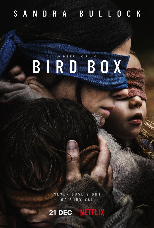 'Bird Box' film poster now streaming on Netflix. (Merrick Morton/Netflix)