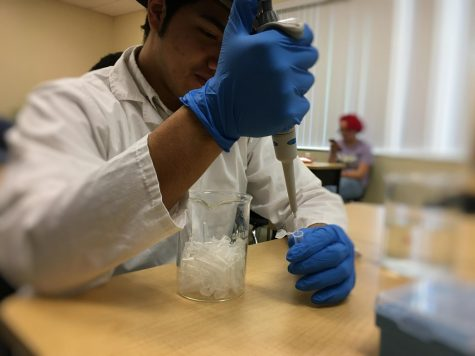 Senior, Daniel Rodriguez simulating the preparation for polymerase chain reaction.